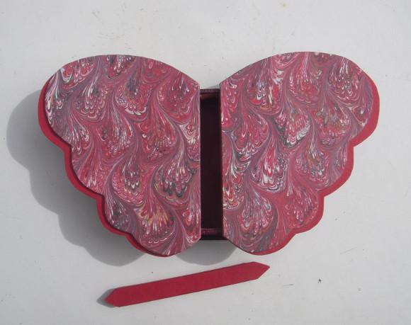 Boitepapillon580